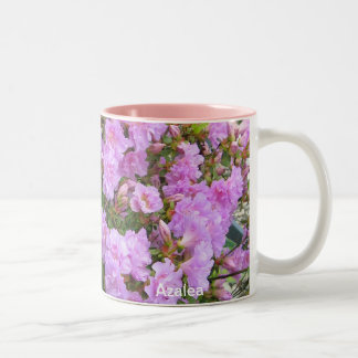 Wrapped in Azaleas Mug