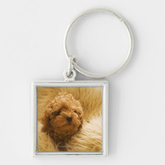 Wrapped up Poodle Silver-Colored Square Key Ring