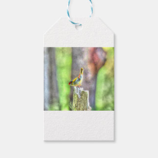 WREN AUSTRALIA ART EFFECTS GIFT TAGS