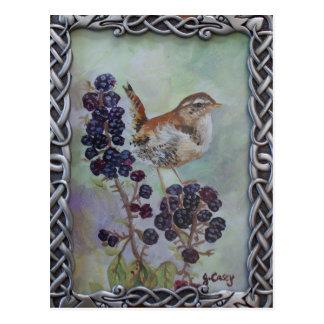 Wren & Brambles art by Joanne Casey Postcard