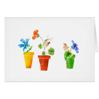 Wrens and Flowerpots Card