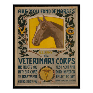 WW1 VINTAGE Vet. Corps POSTER