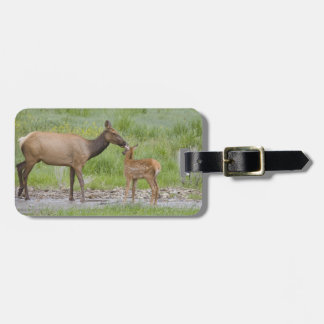 WY, Yellowstone National Park, Elk calf and Travel Bag Tag