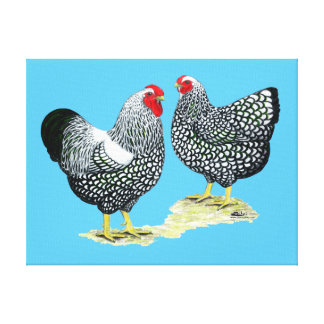 Wyandottes Silver-laced Pair Canvas Print