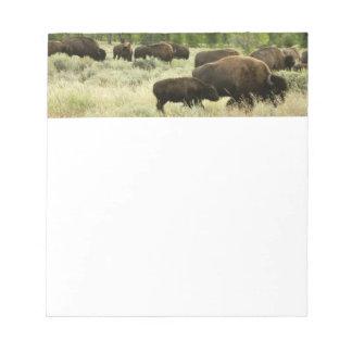 Wyoming Bison Nature Animal Photography Notepad