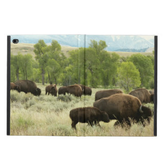 Wyoming Bison Nature Animal Photography Powis iPad Air 2 Case