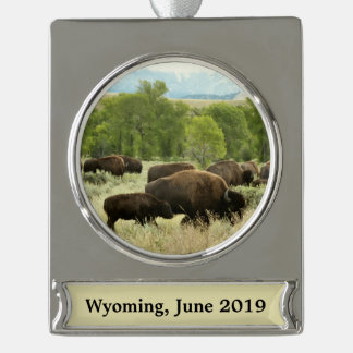 Wyoming Bison Nature Animal Photography Silver Plated Banner Ornament