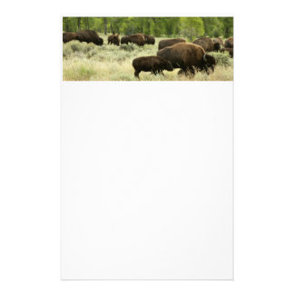 Wyoming Bison Nature Animal Photography Customised Stationery