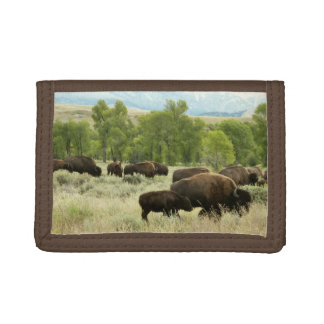 Wyoming Bison Nature Animal Photography Tri-fold Wallets