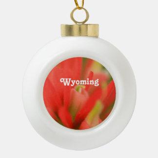Wyoming Indian Paintbrush Ornaments