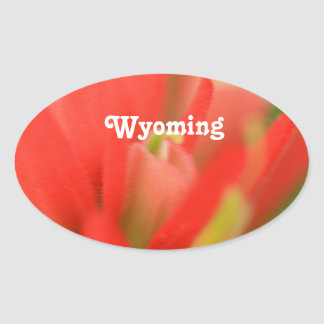 Wyoming Indian Paintbrush Oval Stickers