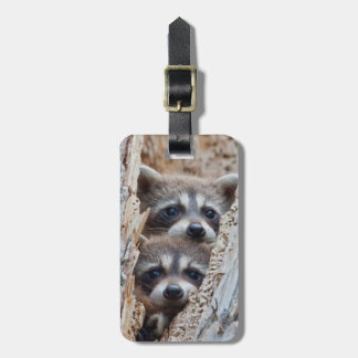 Wyoming, Lincoln County, Raccoon Tags For Luggage