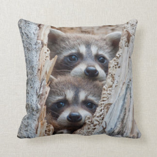 Wyoming, Lincoln County, Raccoon Throw Pillow