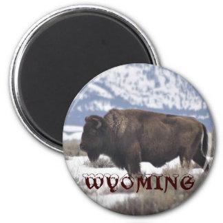 Wyoming 6 Cm Round Magnet