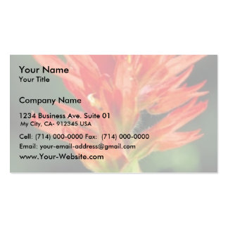 Wyoming Paintbrush Business Card Templates