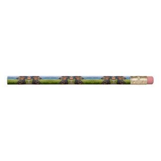 Wyoming Pencil