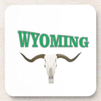 Wyoming skull coaster