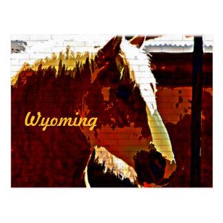 Wyoming, Sorrel Horse In Profile Postcard