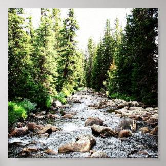 """Wyoming Stream 6""""x6"""" Poster"""