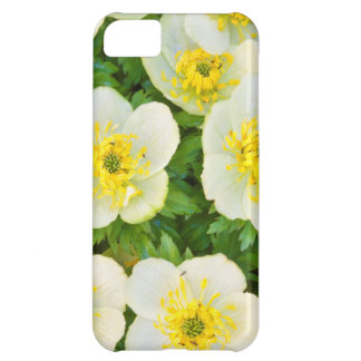 Wyoming, Sublette County, Close-up of a group iPhone 5C Case