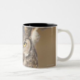 wyoming, united states of america 2 Two-Tone coffee mug