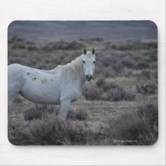 wyoming, united states of america mouse pad