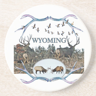 WYOMING wildlife Coaster