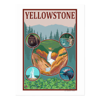 WyomingYellowstone Collage Postcard