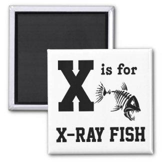 X-ray Fish Magnet