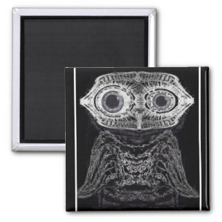 X-ray Owl Square Magnet