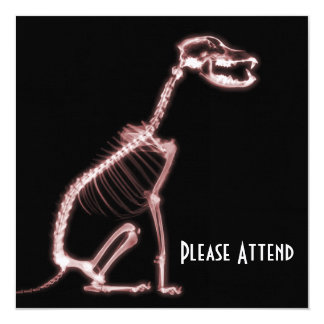 """X-RAY PUPPY DOG SKELETON SITTING - RED 5.25"""" SQUARE INVITATION CARD"""