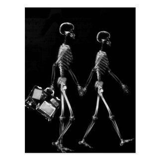X-Ray Skeleton Couple Travelling Black White Postcard
