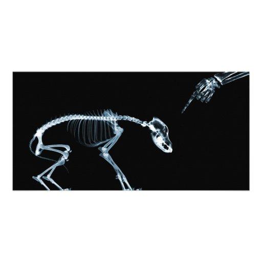 X-Ray Skeletons Blue Bad Dog Personalized Photo Card