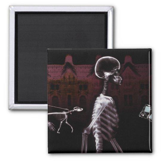 X-Ray Skeletons Midnight Stroll Magnet