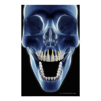 X-ray style look at human teeth poster