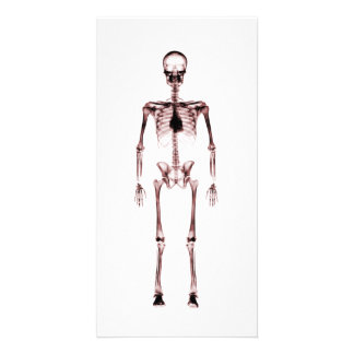 X-Ray Vision Single Skeleton White Red Photo Cards