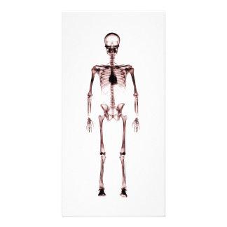 X-Ray Vision Single Skeleton White Red Photo Greeting Card