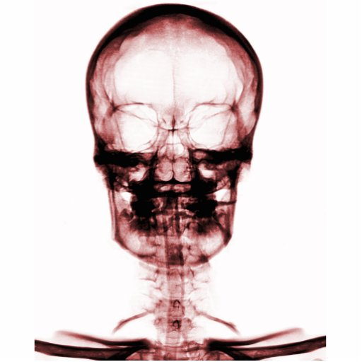 X-RAY VISION SKELETON SKULL - RED PHOTO CUT OUT