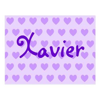 Xavier in Purple Post Card