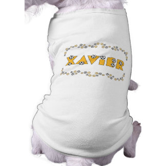 Xavier in Soccer Gold Pet Clothes