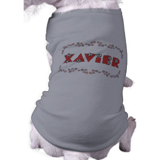 Xavier in Soccer Red Dog Clothing