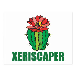 Xeriscaping Postcard