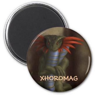 Xhoromag 17 magnet