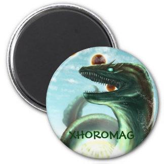Xhoromag 18 magnet