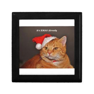 xmas cat gift box