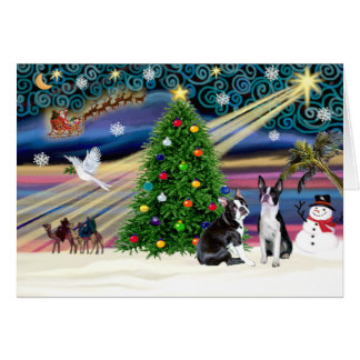 Xmas Magic-BostonTerrier Pair Card