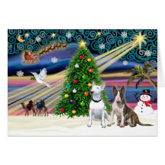 Xmas Magic-Bull Terrier Pair Card