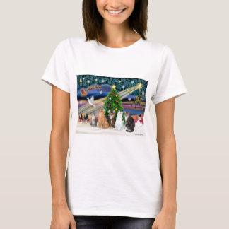 Xmas Magic - Five cats (AmSH) T-Shirt