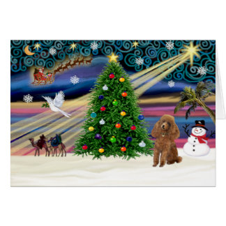 Xmas Magic-Poodle-Toy-Apricot Greeting Card