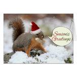 Xmas Squirrel in Snow Greeting Card